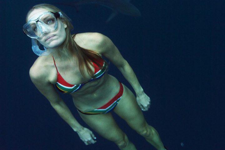 Shark attack7