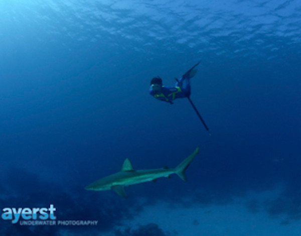 Inside the world of freediving (part 1)