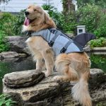Shark styled life jacket for Dogs