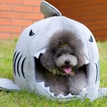 Shark pet house for small dogs & brave cats