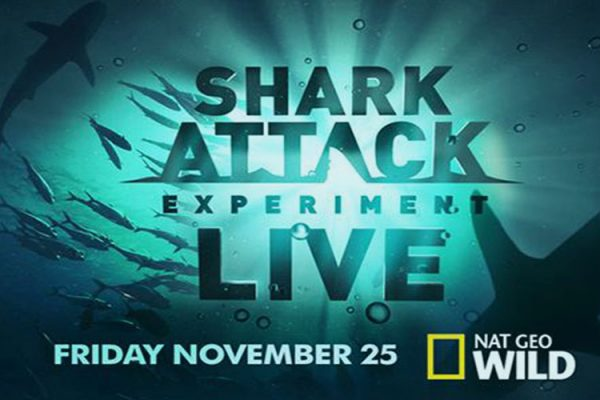 Shark Attack Experiment live. For National Geographic Wild 2012
